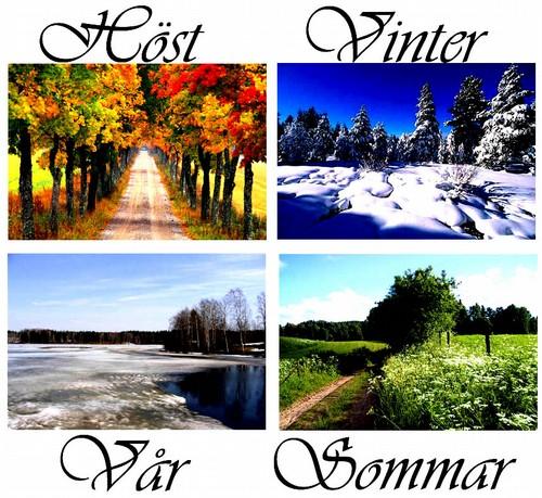 årsiderna våren sommaren hösten och vintern